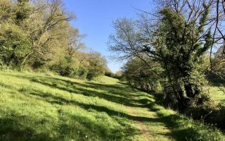 Planning a successful rural walk in five steps