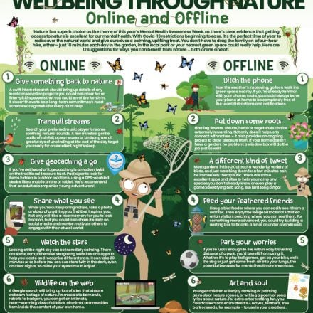Wake Up Wednesday: 12 Top Tips to Supporting Mental Wellbeing Through Nature Online and Offline